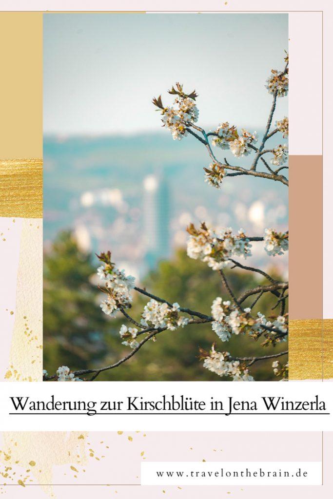 Pin: Kirschblüte in Jena Winzerla