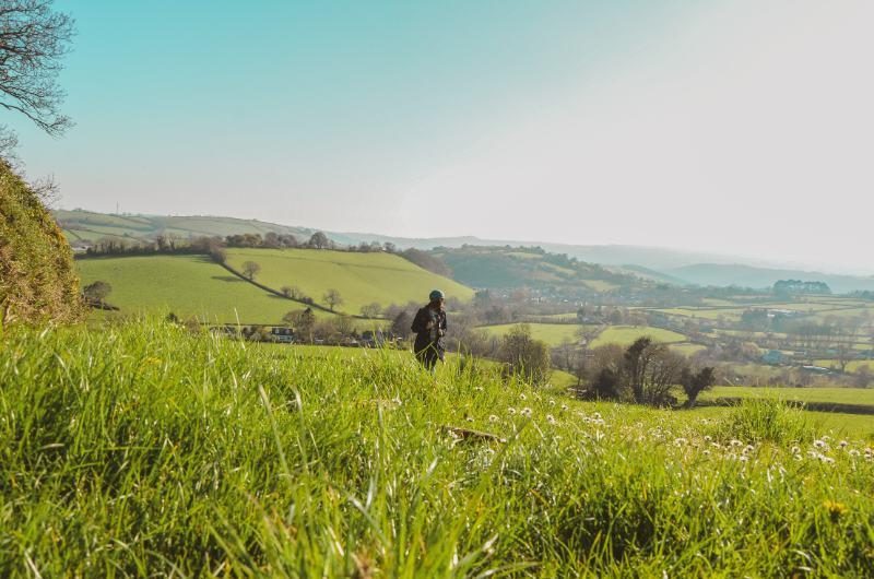 Wiesen und Felder in Ashburton, England im Frühling