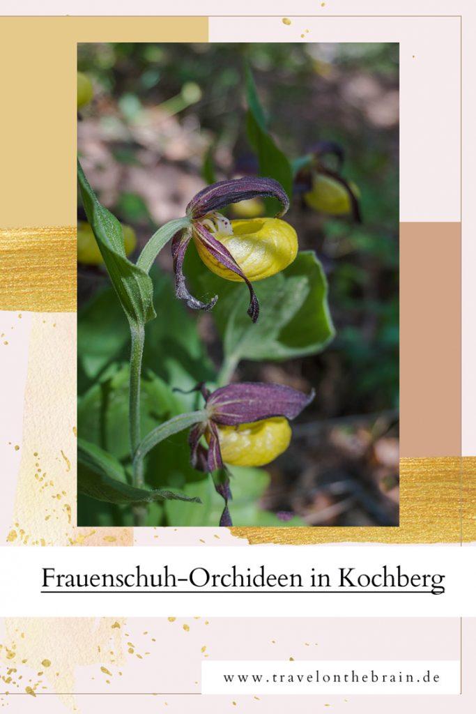 Pin: Frauenschuh bei Kochberg in Thüringen