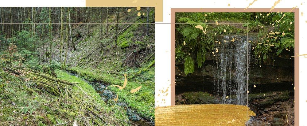 Header: Nossengrund & Amselfall in Quirla, Thüringen