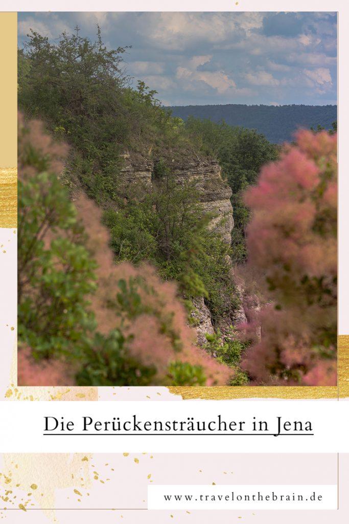 Pin: Perückensträucher in Jena - Wandern in den Sonnenbergen + Tipps